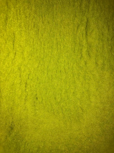 Pet Isofloor Vetbed 150x100 lime grün